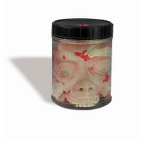 HEAD IN LAB JAR