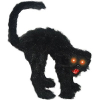 BLACK CAT WITH LIGHT UP EYES